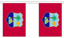 WEST INDIES BUNTING - 9 METRES 30 FLAGS